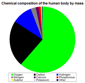 image27 Komposisi Bahan Kimia Tubuh Manusia