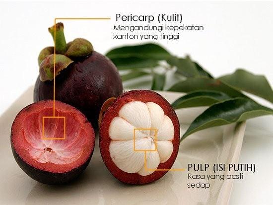 Kehebatan manfaat kulit buah manggis