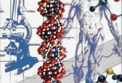 Mengenal enzim endonuklease