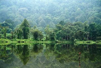 Keanekaragaman Hayati (Biodiversitas) 7