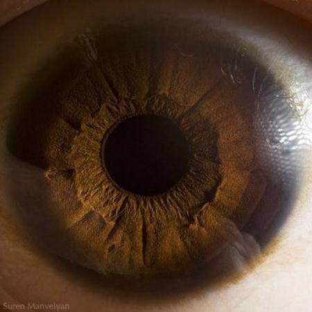 Foto-foto mata : Close up! 5