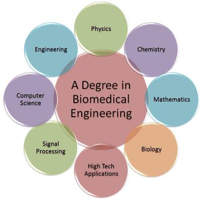 Apa itu Jurusan Teknik Biomedika ? 2