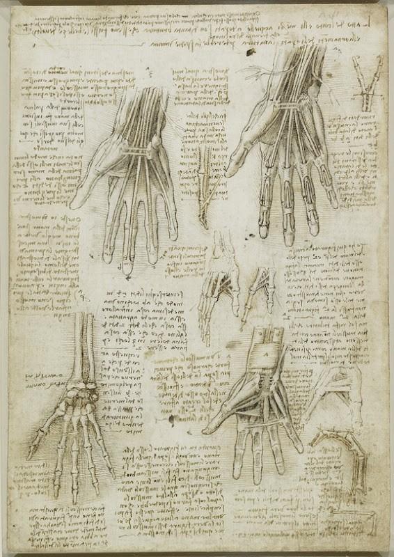 Lukisan Leonardo Da Vinci tentang anatomi manusia 4
