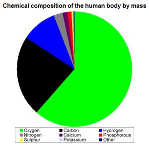 Komposisi Bahan Kimia Tubuh Manusia 2