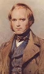 Charles Darwin sang pencetus Teori Evolusi 4