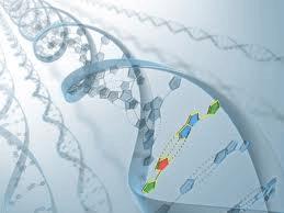 Bioteknologi (1) : Konsep dasar dan perkembangan