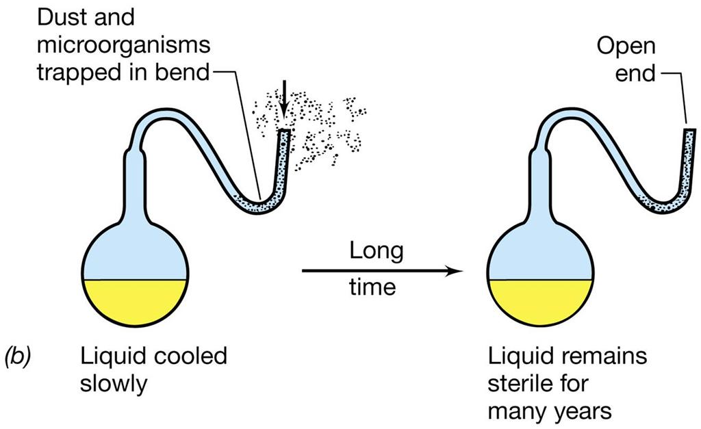 Asal-usul kehidupan : Biogenesis versus Abiogenesis (1)
