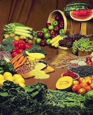 Sistem Pencernaan (1) : Jenis dan Fungsi Bahan Makanan dan Vitamin